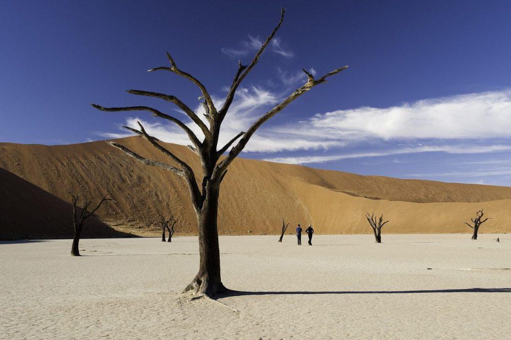 The Dead Vlei Sossusvlei Namibia