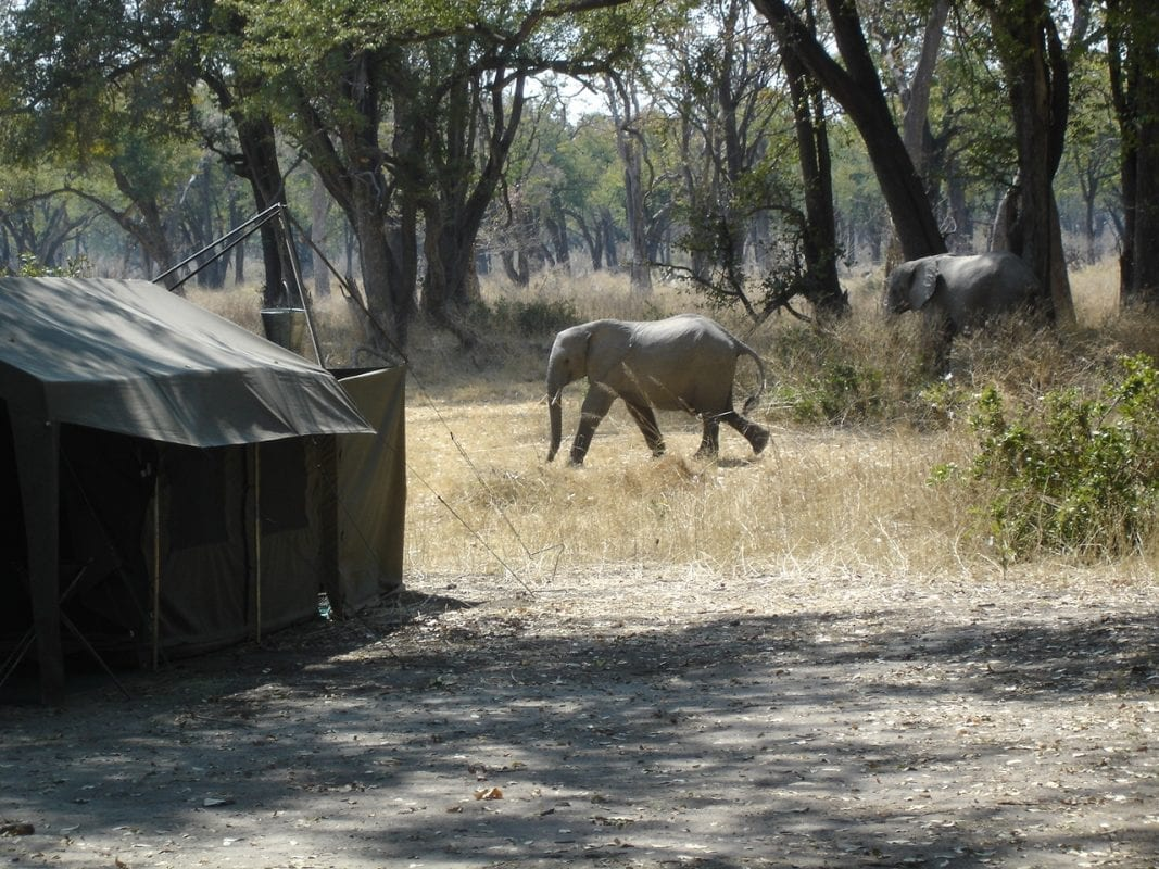 Mobile Camping Safari Botswana