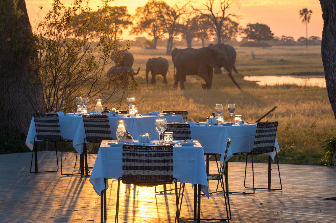 Elephants viewed from the outdoor dinning area at sunset, Linkwasha African Safari Zimbabwe
