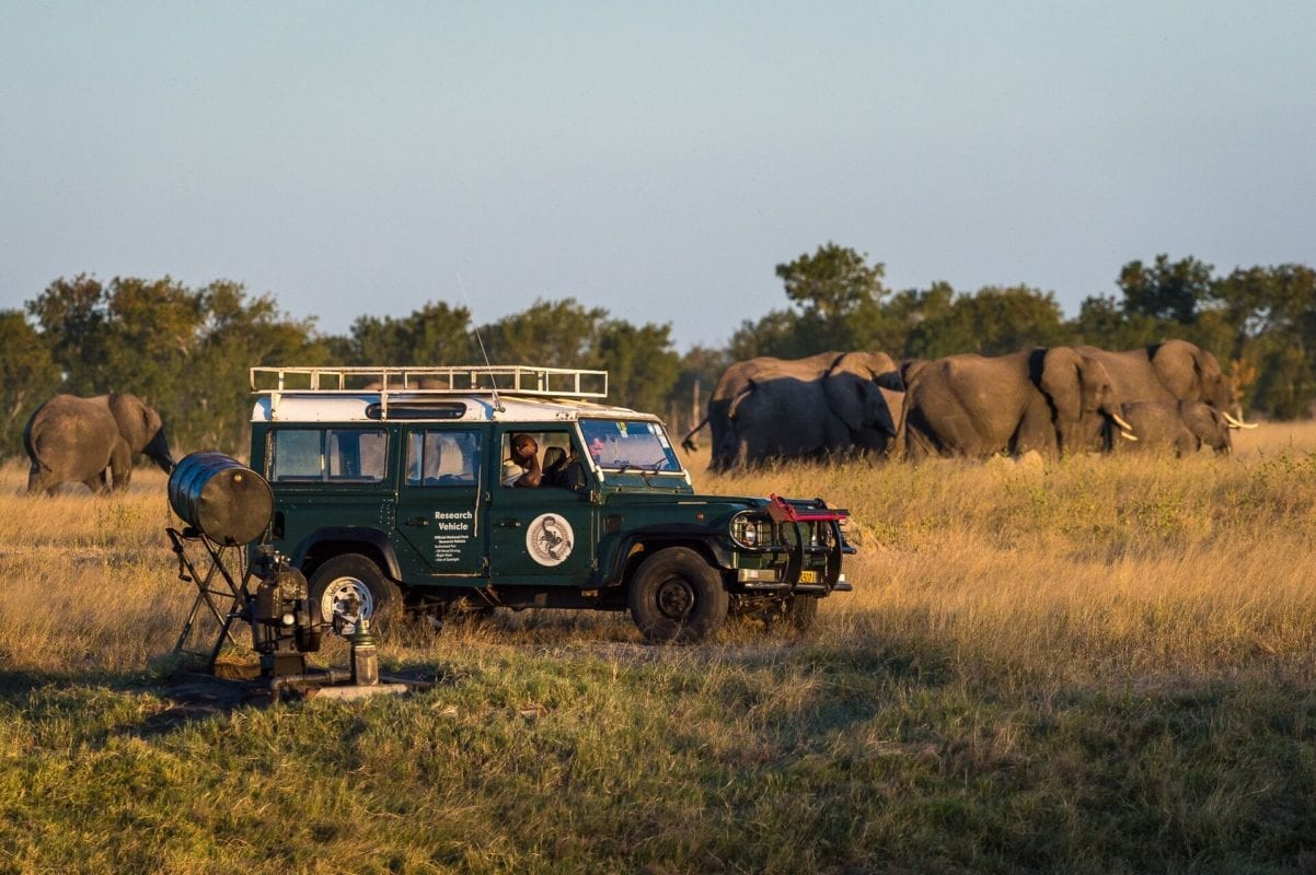 Wilderness Safaris Elephant Research Crew