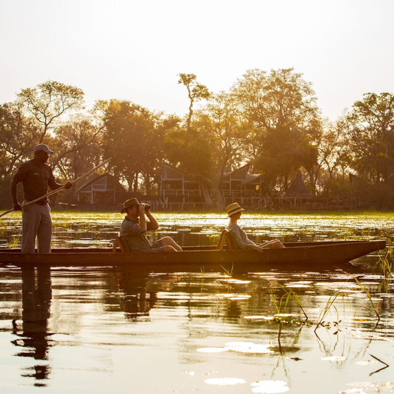Mokoro journey in front of the Abu Camp - Okavango Delta